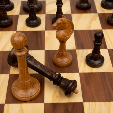 Шахматы ларец Элеганс орех