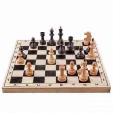 Шахматы Игрок бук